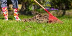 garden clearance dublin