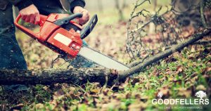 local trusted tree cutting in Roundwood